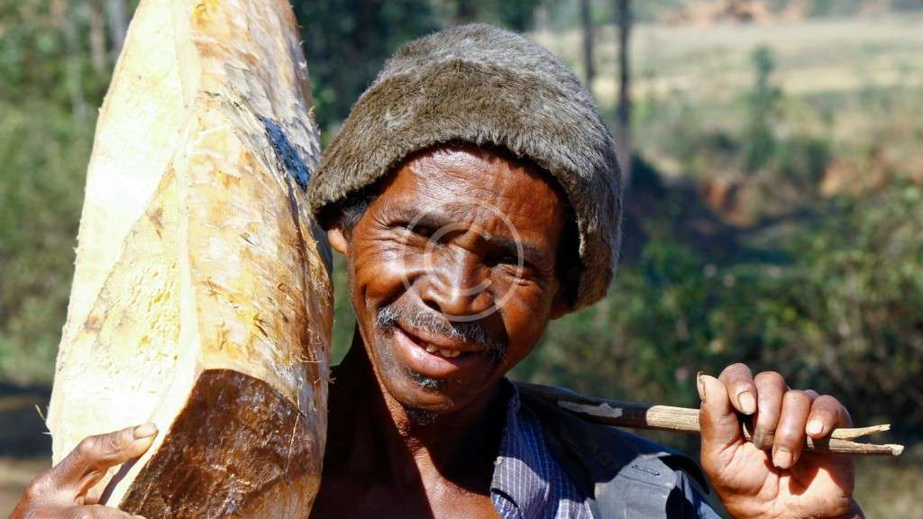 Africa`s Starvation Issues: How the Ecology Influences Those
